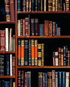 курсове-български-литература-софия