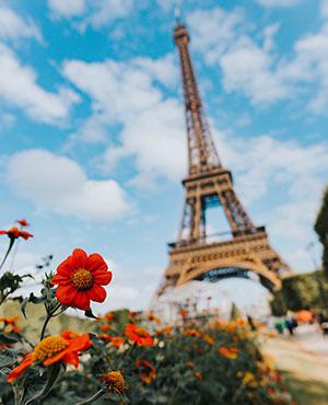 курсове-френски-език-софия